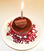 Post image for tijasmine (jasmine BDD for Appcelerator Titanium) turns 1.0.0